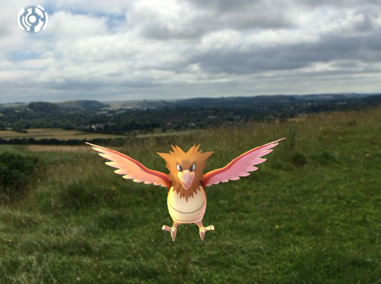 Pokemon at Cley Hill