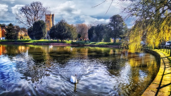Devizes Crammer by Peter Daltry