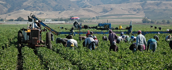 Labor Trafficking in the U.S.: A Closer Look at Temporary Work Visas