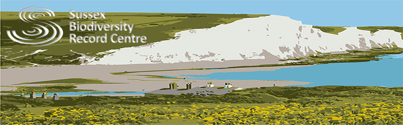 SxBRC banner