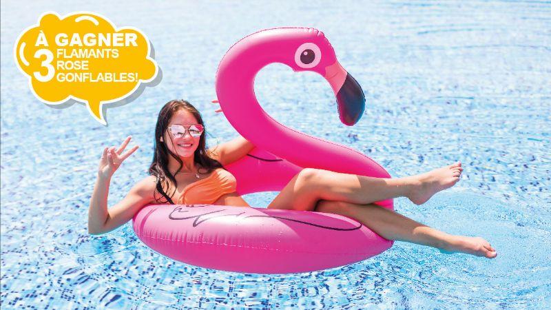 Flamingo gonflable à gagner