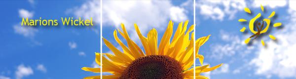 Eigentlich sollten Sie hier eine Sonnenblume sehen.