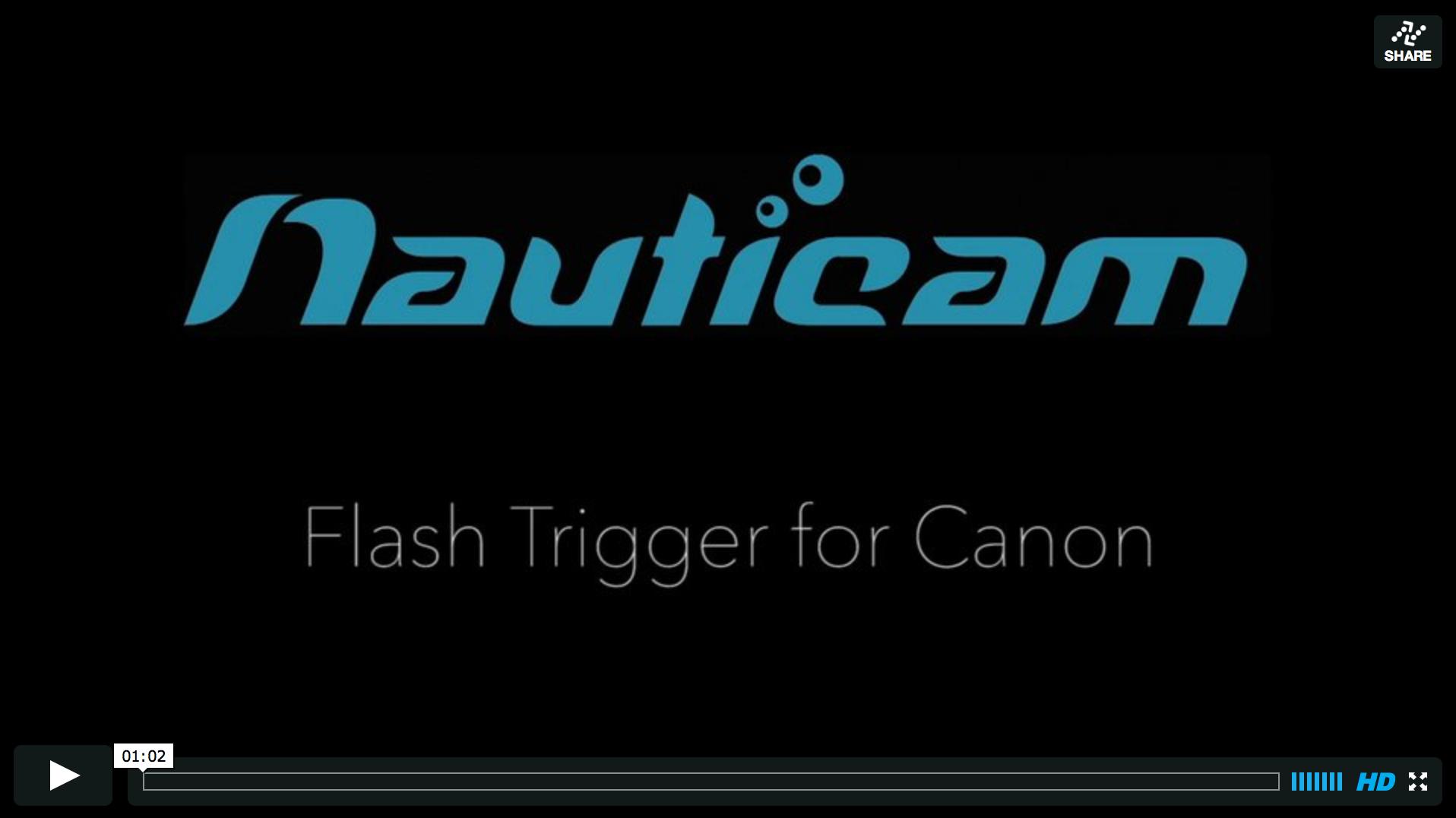 Flash Trigger Video