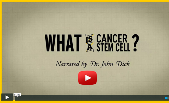 what is a cancer cell