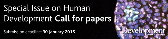 special issue on human development call for papers