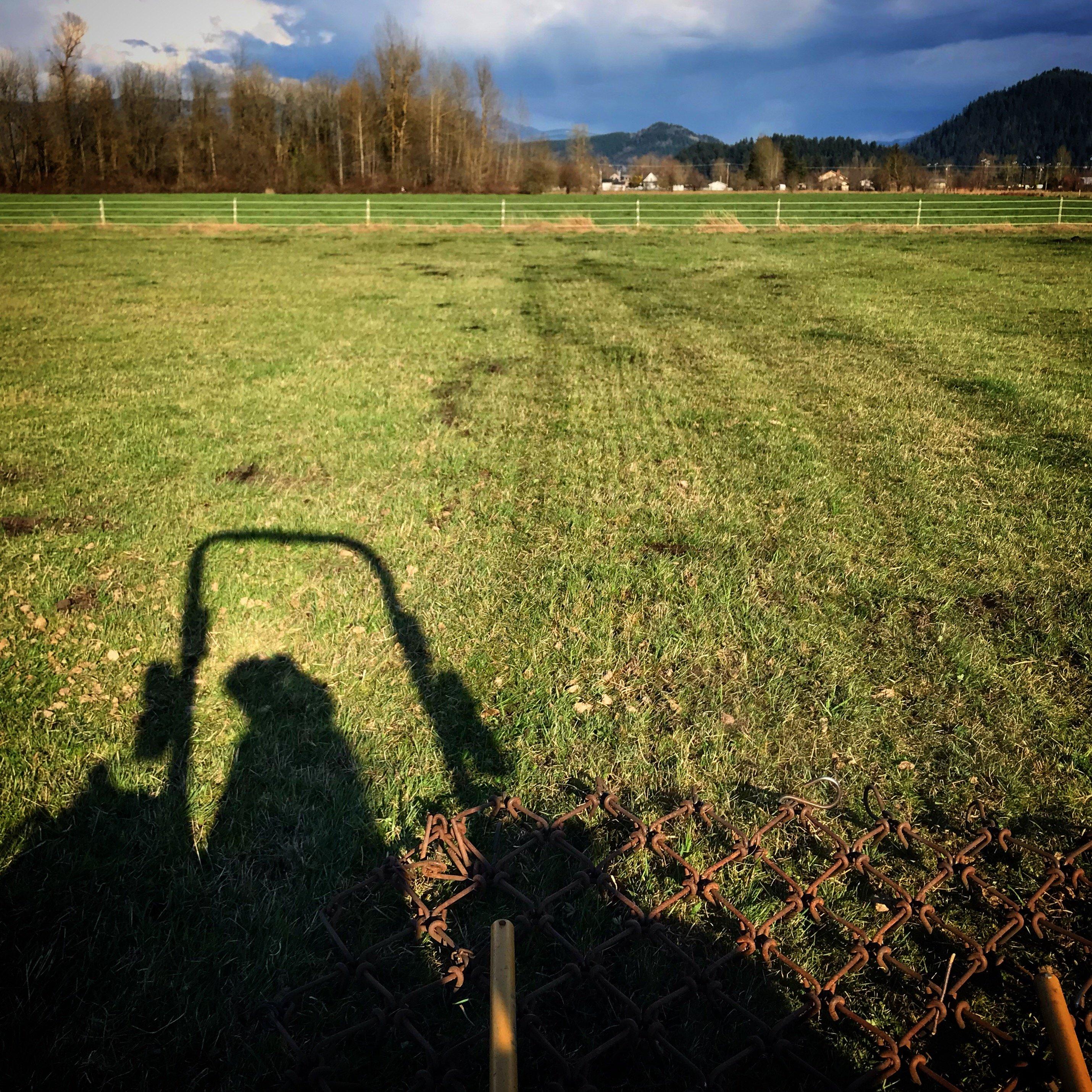 Harrowing Pasture in Enumclaw
