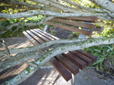 Seaview seat after storm