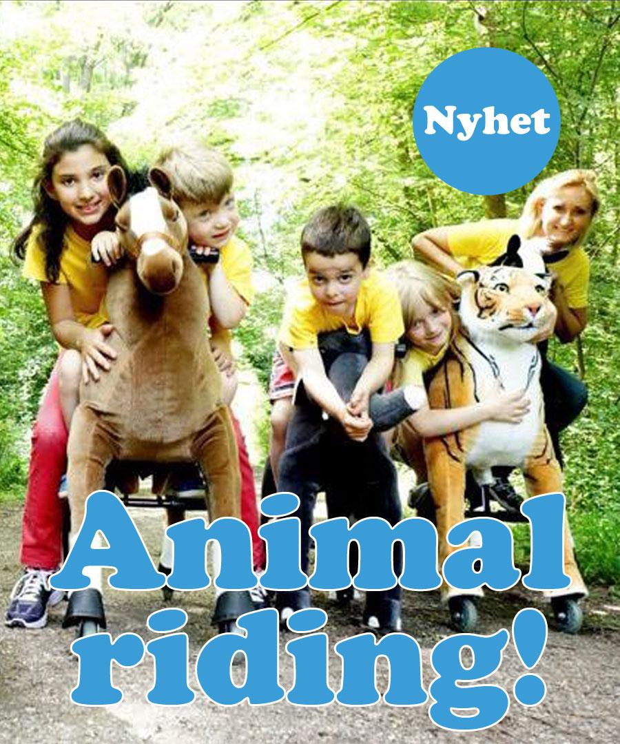 Animal Riding!