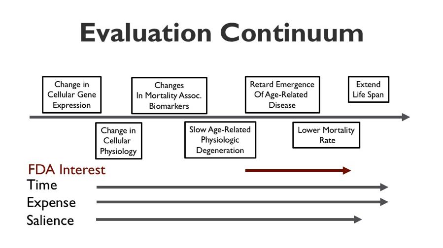Evaluation Continuum