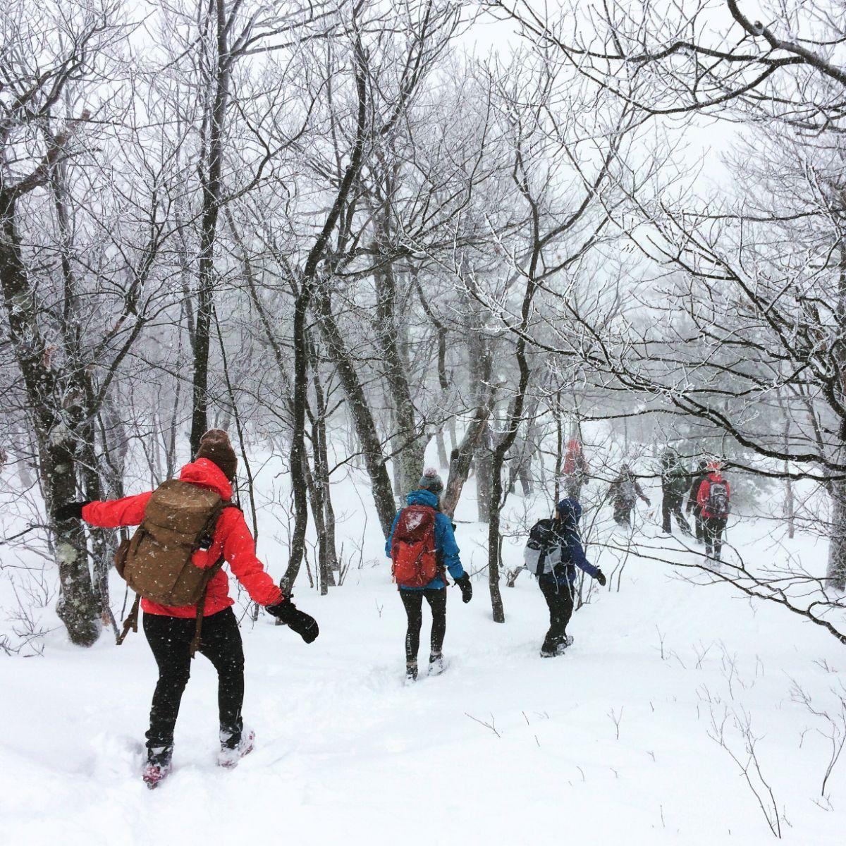 Ledges Trail, Pleasant Mountain