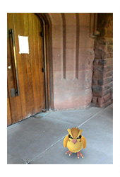 Graham Library with Pidgey
