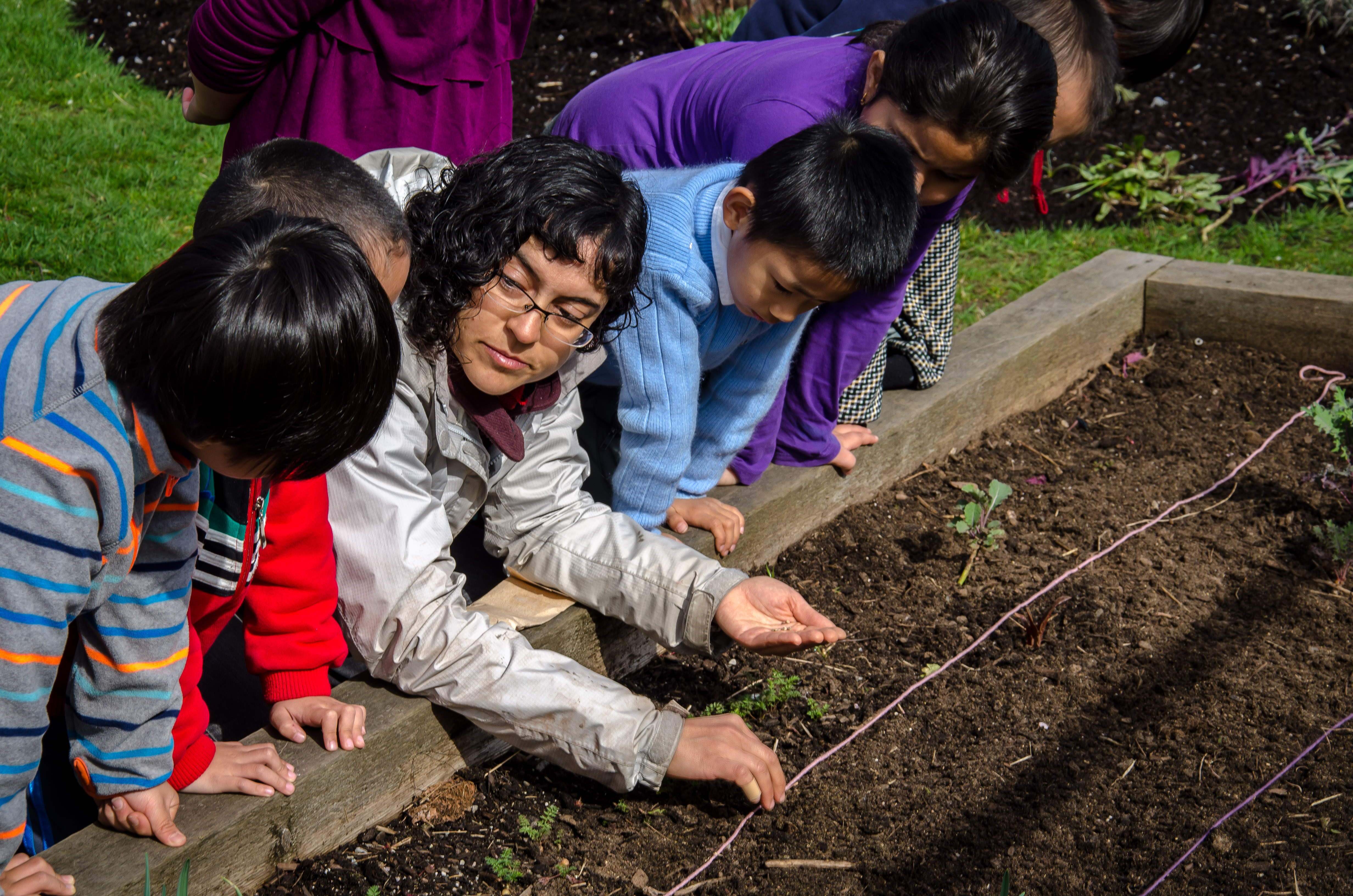 Nikoo, SPEC's School Gardens Coordinator, teaching children at one of our schools