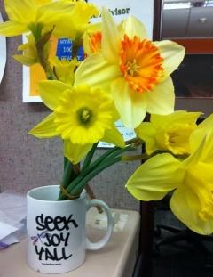 Daffodils o' joy from my desk at work