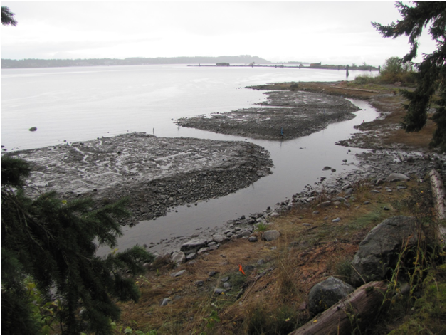 Newly built islands showing tidal drainage channels