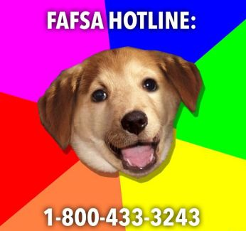 Cute Doggy Helps with FAFSA