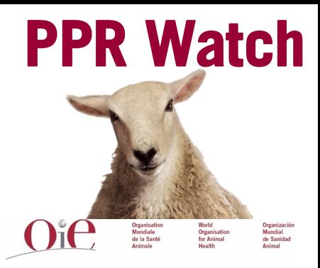 PPR Watch Logo