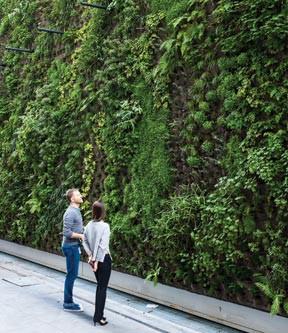 http://cottages-gardens.us1.list-manage2.com/track/click?u=549a6a8fc0ef9f9e1876460fc&id=fbb79cfbcd&e=22ad9e557d