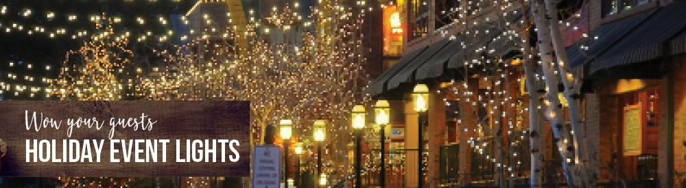 Event & Indoor String Lights