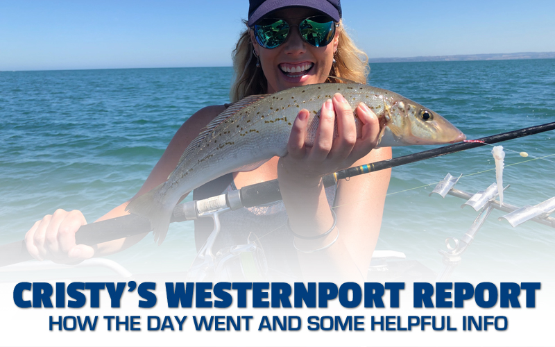 Cristys Western Port Report