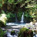 Goshikigahara Nature Trail