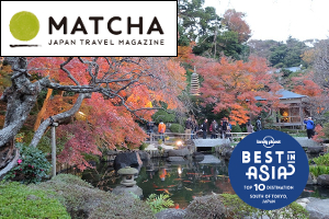 Kamakura's 4 Best Autumn Leaves Spots (Matcha)