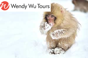 Featured wholesale tour: Trails of Japan (Wendy Wu Tours)