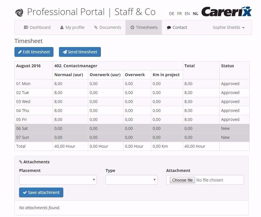 Professional Portal - Laat uw professionals online hun eigen profiel beheren en de gewerkte uren doorgeven.