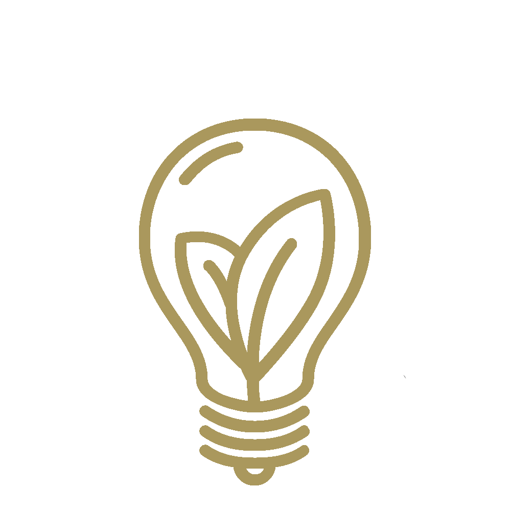 Lightbulb with leaves Inside Icon