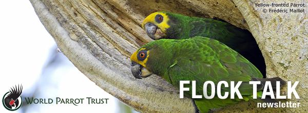 World Parrot Trust - Flock Talk eNewsletter