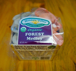 A container of Mousam Valley Mushrooms forest medley