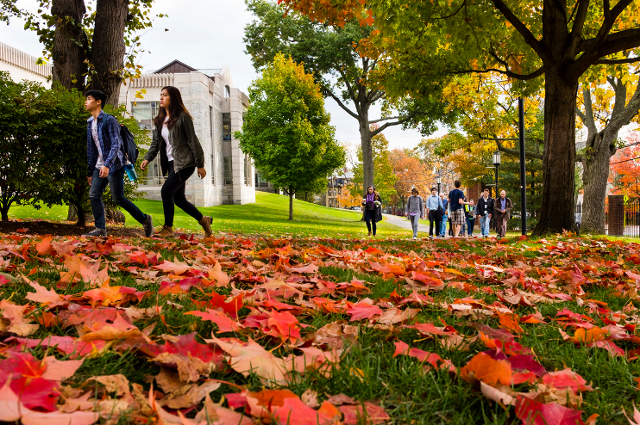 Tufts in Fall