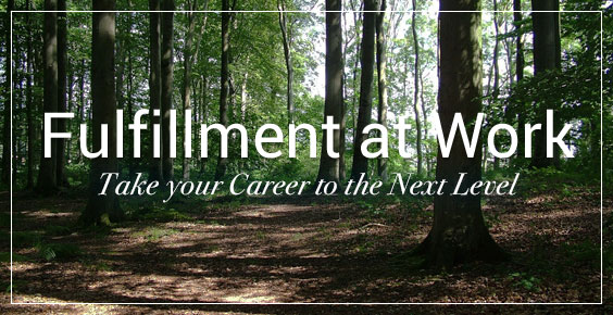 Fulfillment at Work Newsletter : Take Your Career to the Next Level