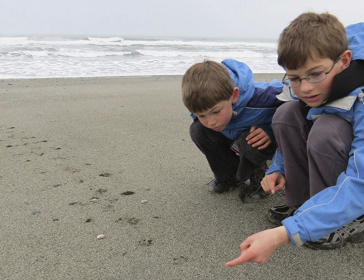 Luke and Adam Garside point out penguin tracks during an earlier census