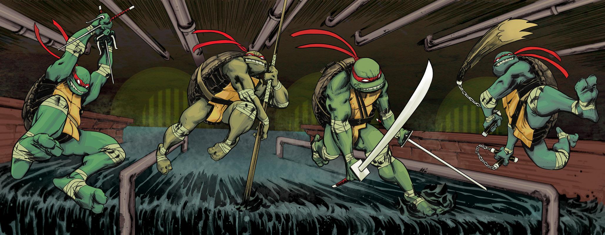 [Teenage Mutant Ninja Turtles connected cover art]
