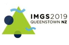 IMGS 2019 logo