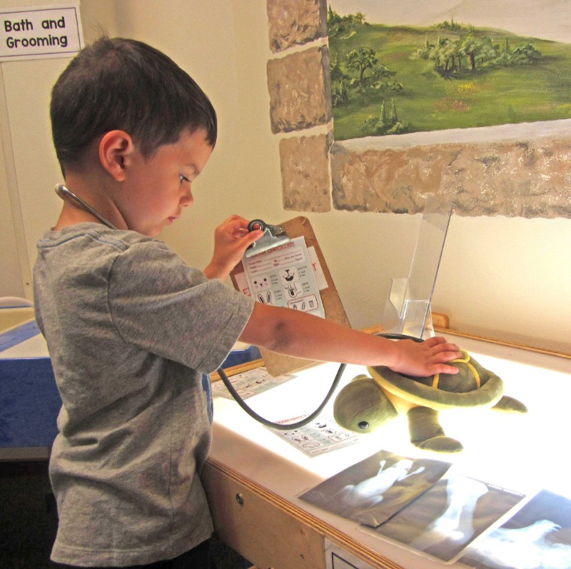 Little boy stands at lighted table, holding clipboard and a stuffed turtle.
