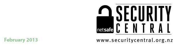 NetSafe Security Central - February 2013 newsletter