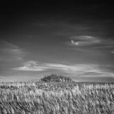 National Award-Winning Photography