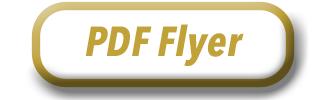 PDF Flyer
