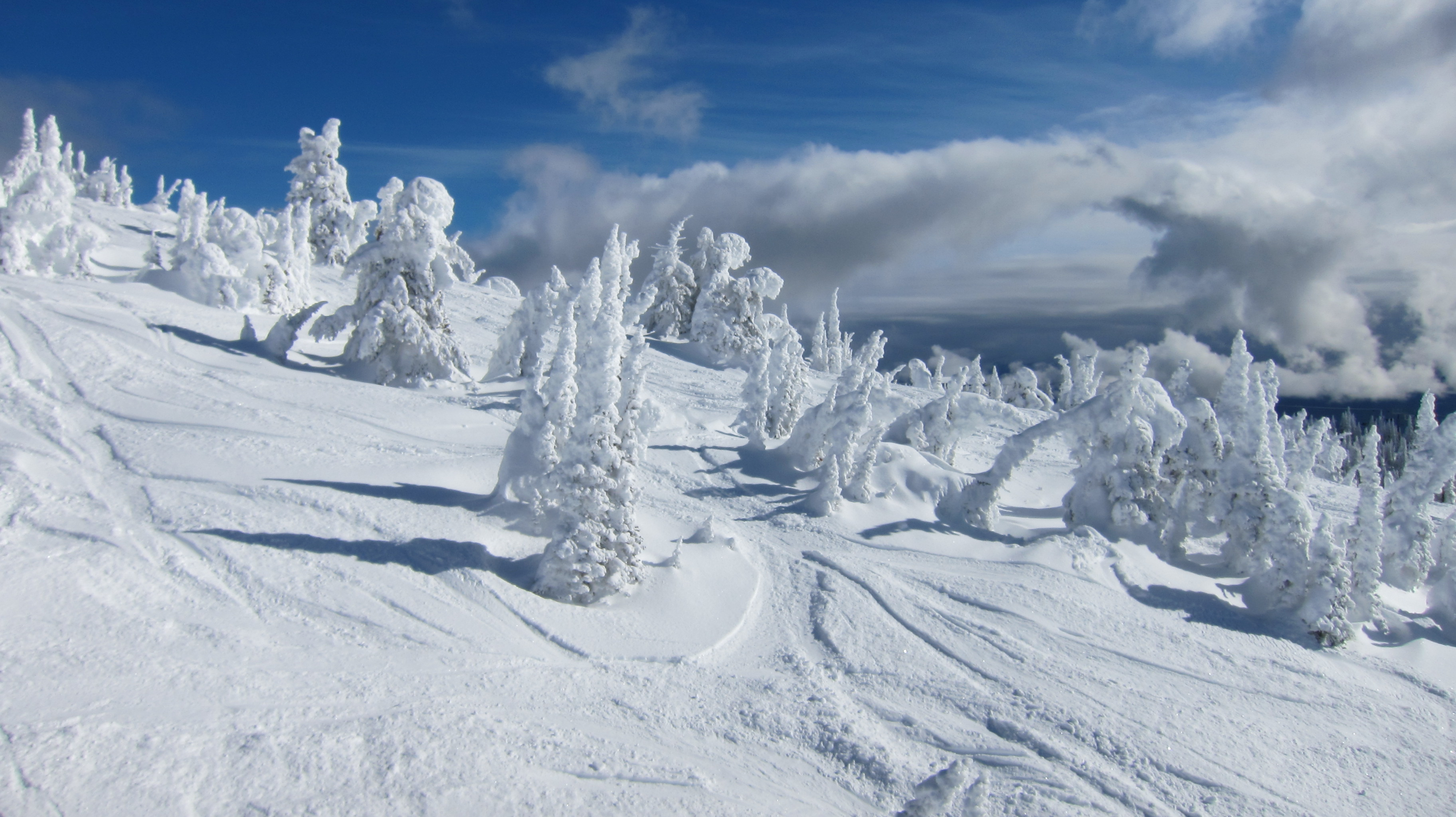 Snow ghosts at Big White