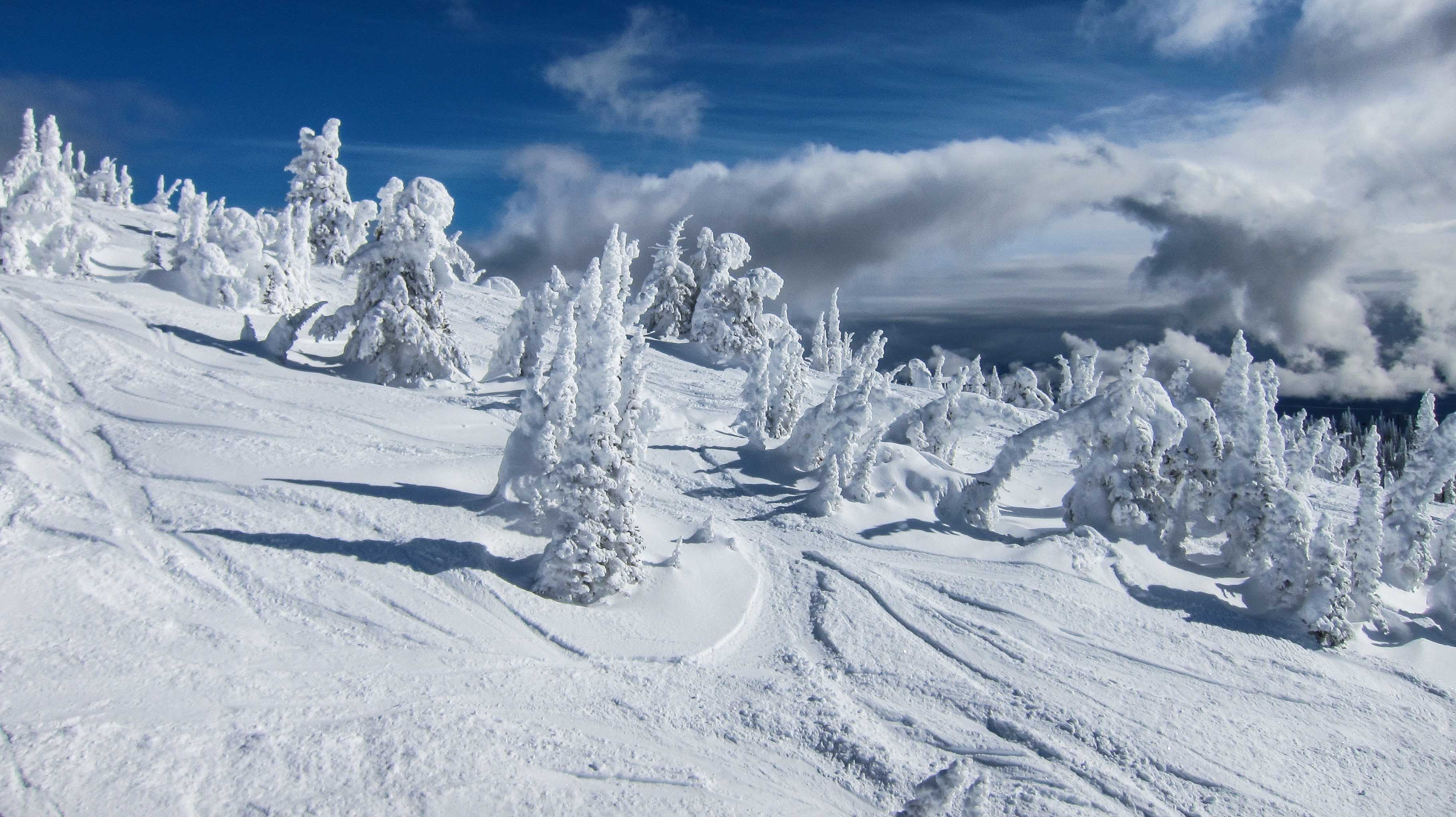 Snow ghosts at Powder Chair