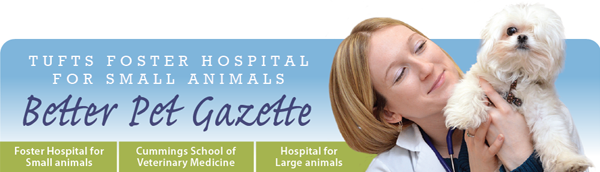 Better Pet Gazette