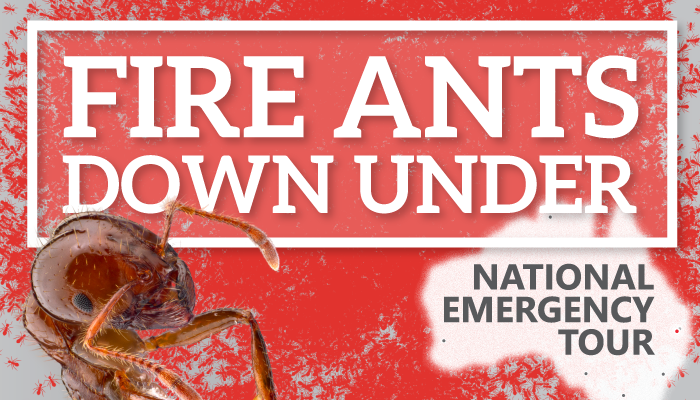 Countdown to our national fire ant tour starts today - book now