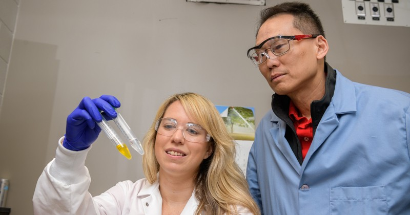 UD researchers Wilfred Chen and Emily Berckman