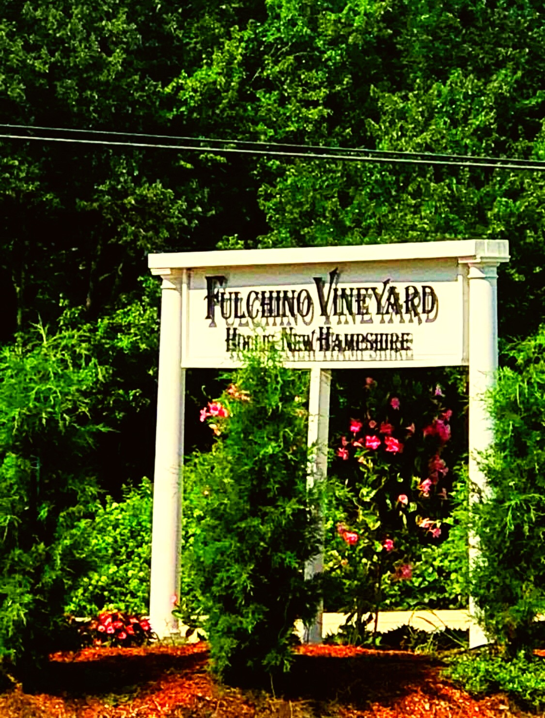 Shop Fulchino Vineyard Events