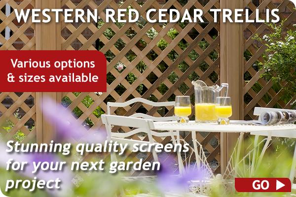 Western Red Cedar Trellis