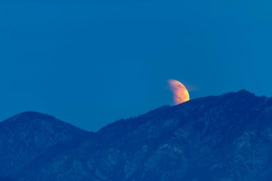Blood Moon Rises