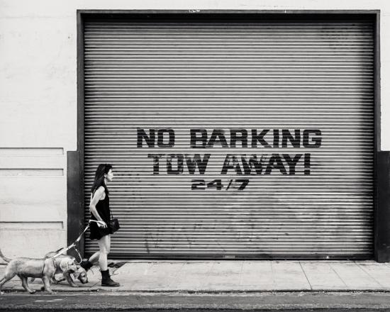 No Barking