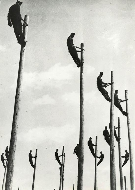 Telephone Poles, 1950s