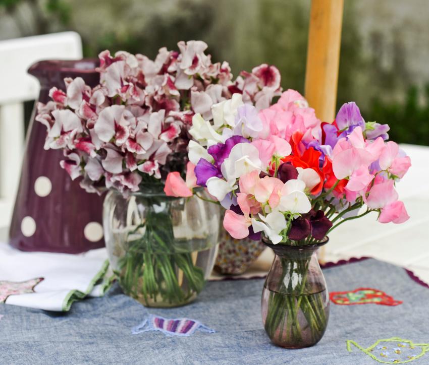 Husk at plukke blomster
